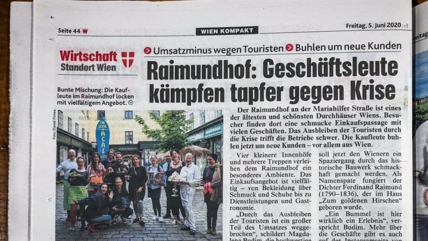 Raimundhof und The Budims in der Kronen Zeitung